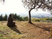 estatua en el jardín de san damián